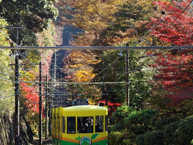 尾山 カー 高 ケーブル
