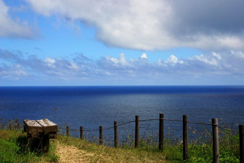 小笠原諸島の自然の画像 p1_8