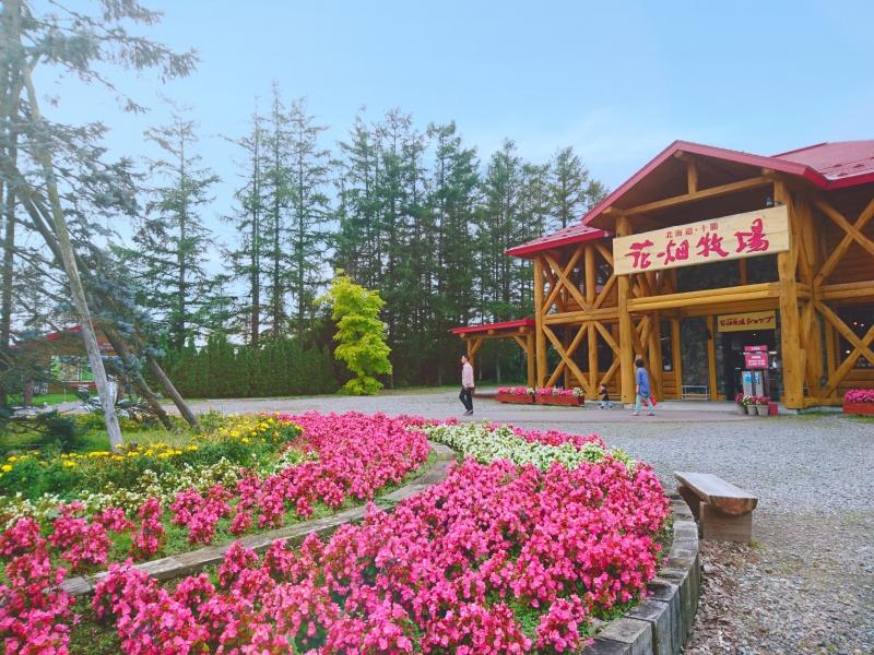 【北海道・十勝】チーズやキャラメルで有名!花畑牧場の見どころ紹介