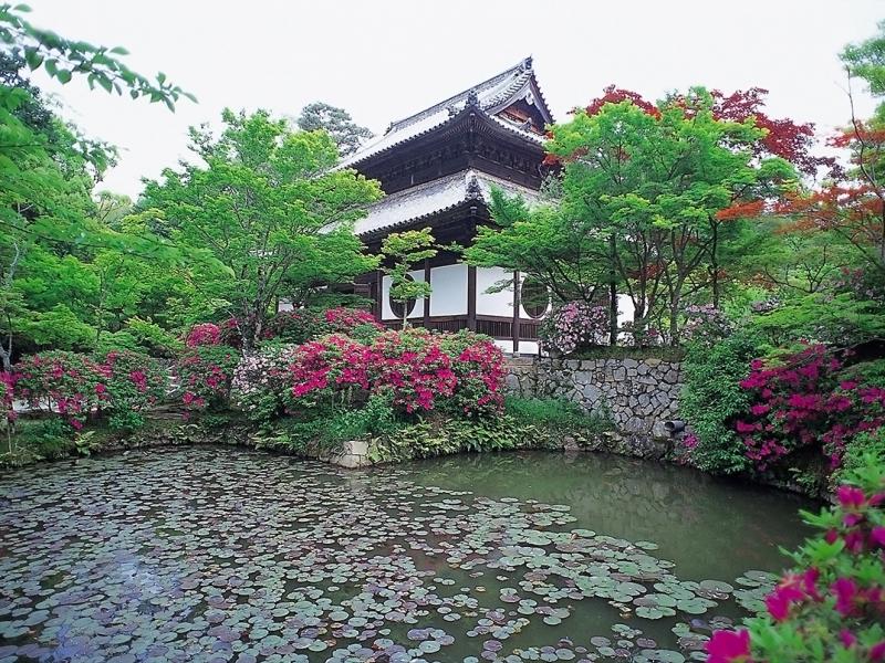 【岡山県】行って良かった神社・仏閣・名城・史跡スポット8選