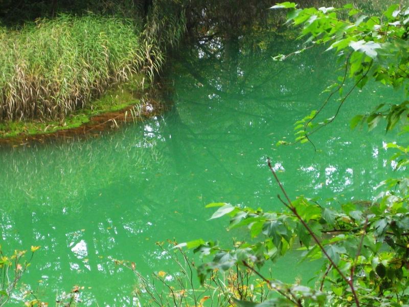 神秘の五色沼と合わせて楽しむスポット9選【福島】