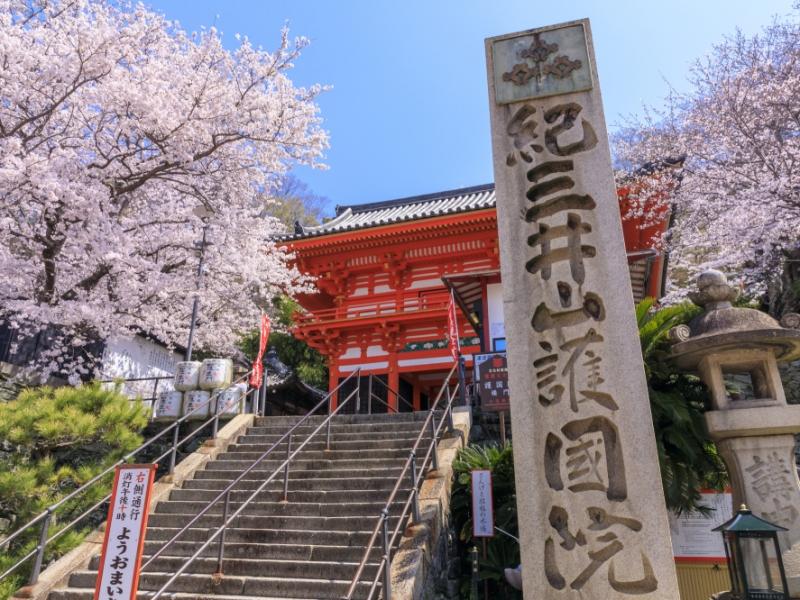 参拝はもちろん、観光にもオススメ!【和歌山】紀三井寺へ行こう