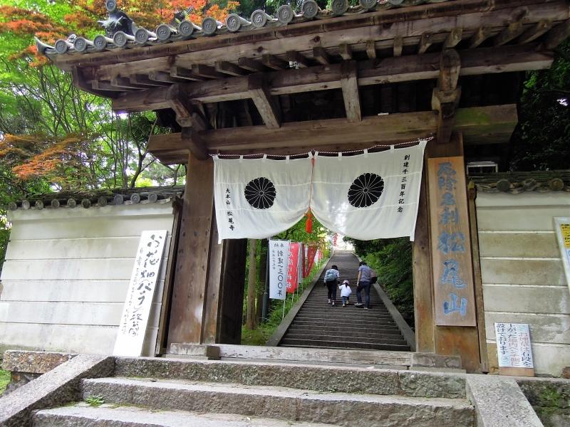 【奈良】日本最古の厄除け寺「松尾寺」へ行こう