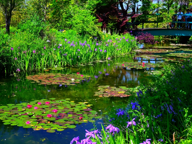 世界にたった2ヵ所だけ。クロード・モネが愛した庭が高知に!モネの庭マルモッタン