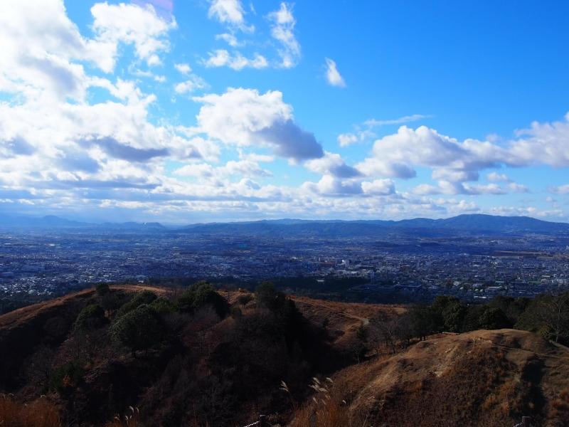 【奈良】春日大社原始林のハイキングコースを歩こう