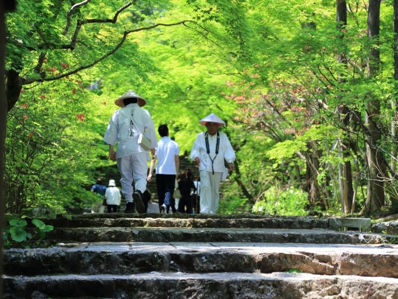 四国八十八ヶ所を1日で巡った事に出来る!?弘法大師生誕の地、香川で巡る初心者向けゆる遍路