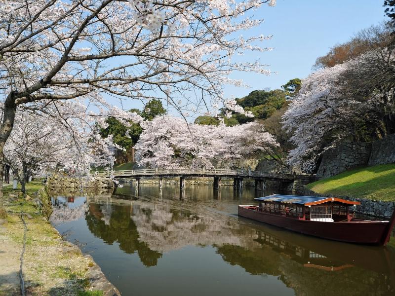 散策が楽しい城下町!彦根のおすすめ観光スポット10選