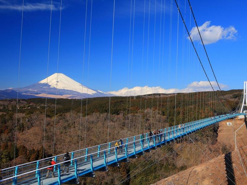 静岡県の人気の橋TOP6!旅行好きが行っている橋ランキング