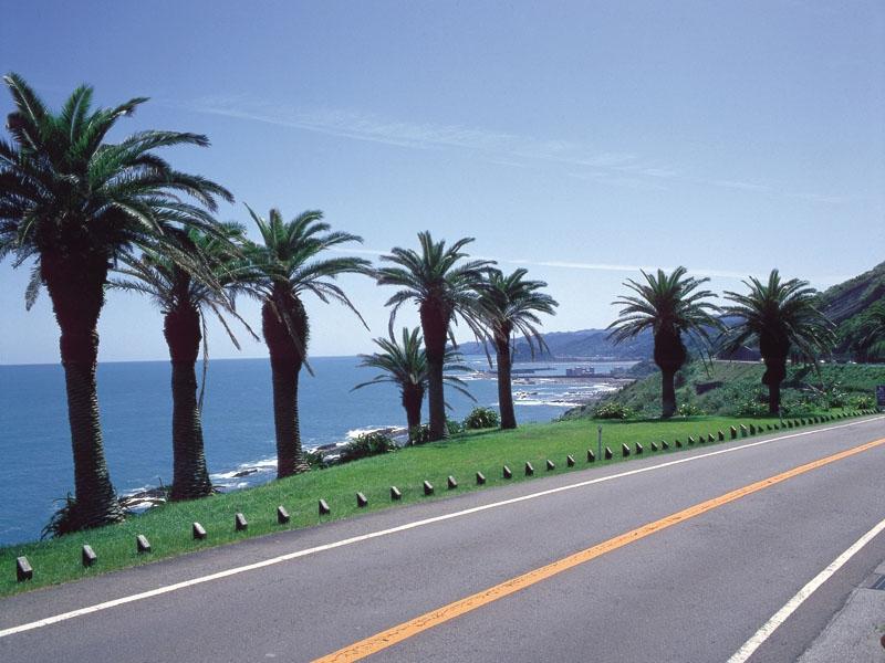 宮崎市の人気観光スポットTOP10!旅行好きが行っている観光地ランキング