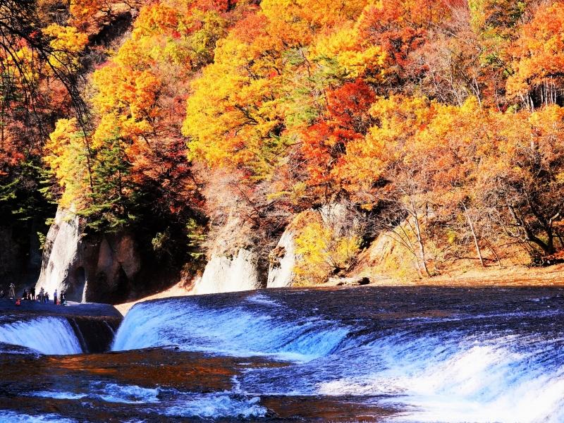 紅葉で彩られた「吹割の滝」へ!駐車場情報も【群馬】