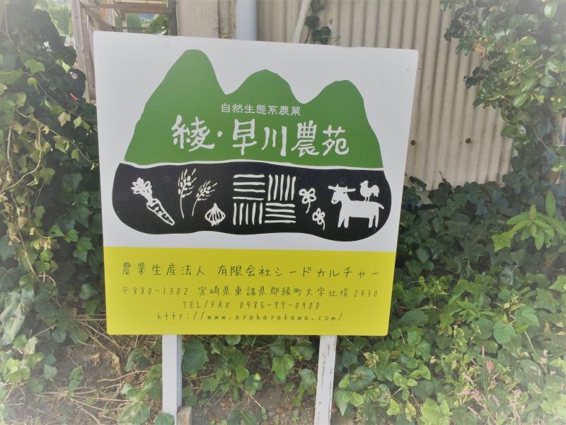宮崎:小さな町に各国大使?TV取材?綾・早川農苑の農業体験を徹底ガイド