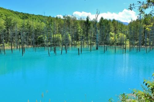 日本の人気の湖沼TOP30!旅行好きが行っている全国の湖沼ランキング