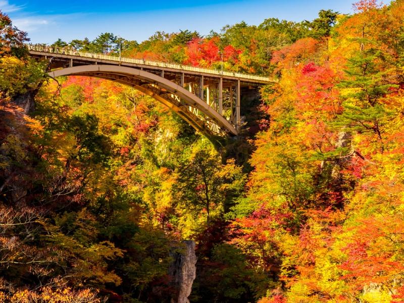 日本の人気の渓谷・峡谷TOP20!旅行好きが行っている全国の渓谷&峡谷ランキング