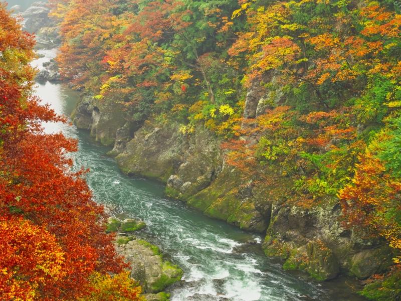 秋色の群馬へ行こう!紅葉の人気スポット3選