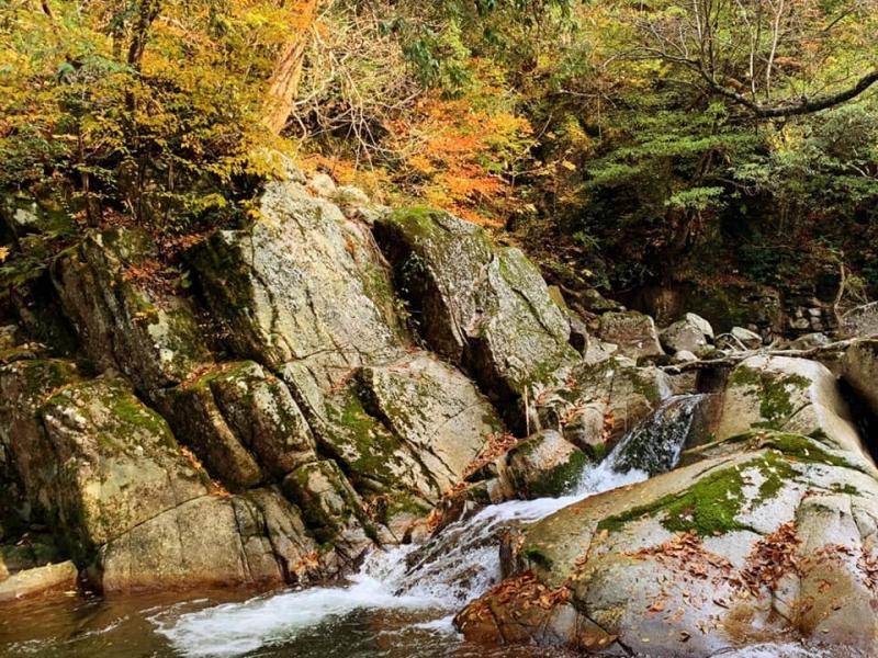 【鳥取】息をのむ美しさ!幻想的な渓谷美を楽しめる国名勝「小鹿渓」へ
