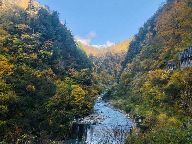 【富山県】黒部峡谷トロッコ電車とお寿司を堪能!