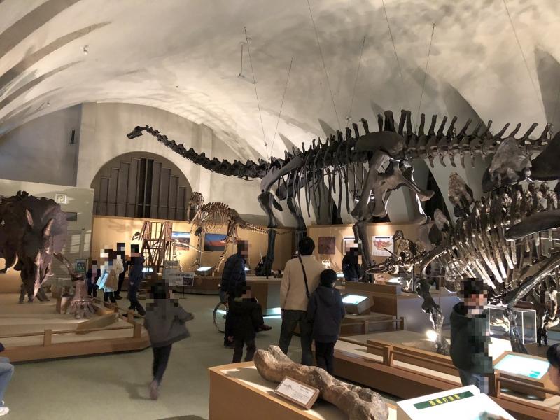 静岡のおすすめ博物館・資料館14選!人気の博物館を一挙紹介