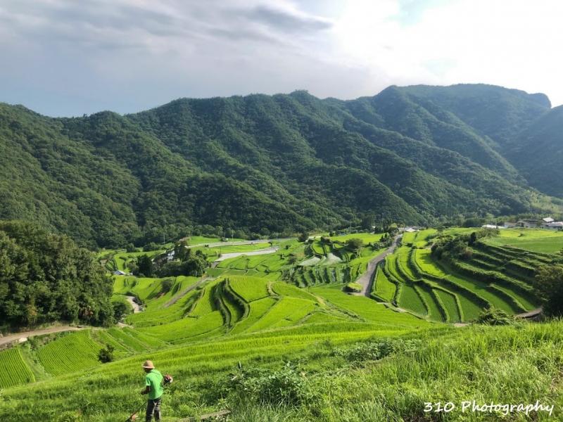 【香川】一日で観光地を巡る!小豆島ぐるっと一周モデルコース