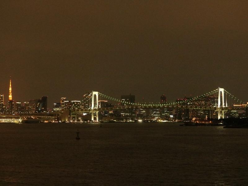 【ディナークルージング】東京湾から見る夜の絶景
