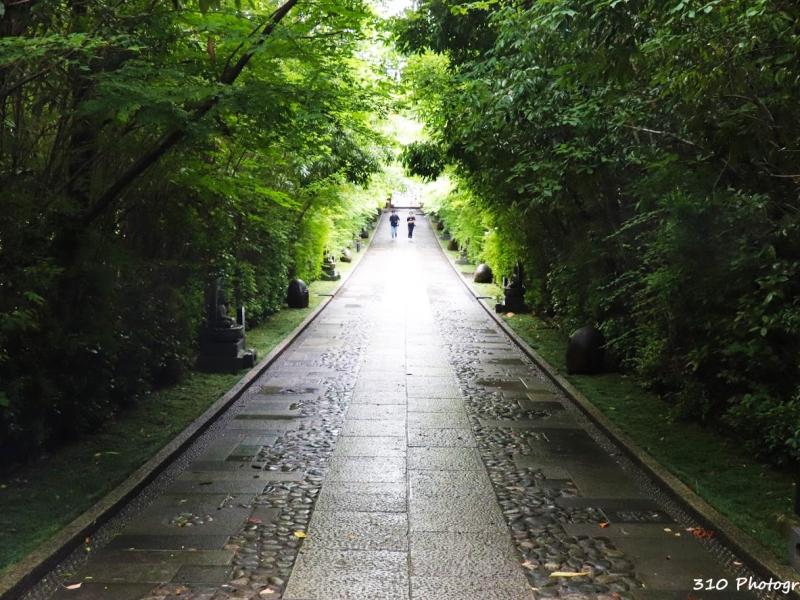 【仙台】ガイドブックに載っていない輪王寺は四季を感じられる穴場スポット