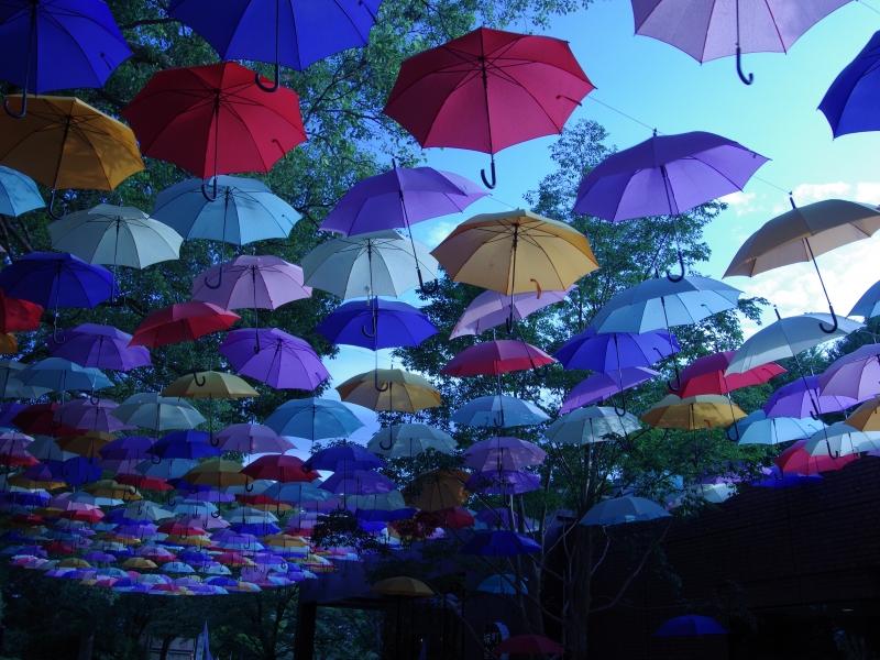 分福茶釜たぬきで有名な群馬県館林市【城町アンブレラスカイ】が夏の空を彩る