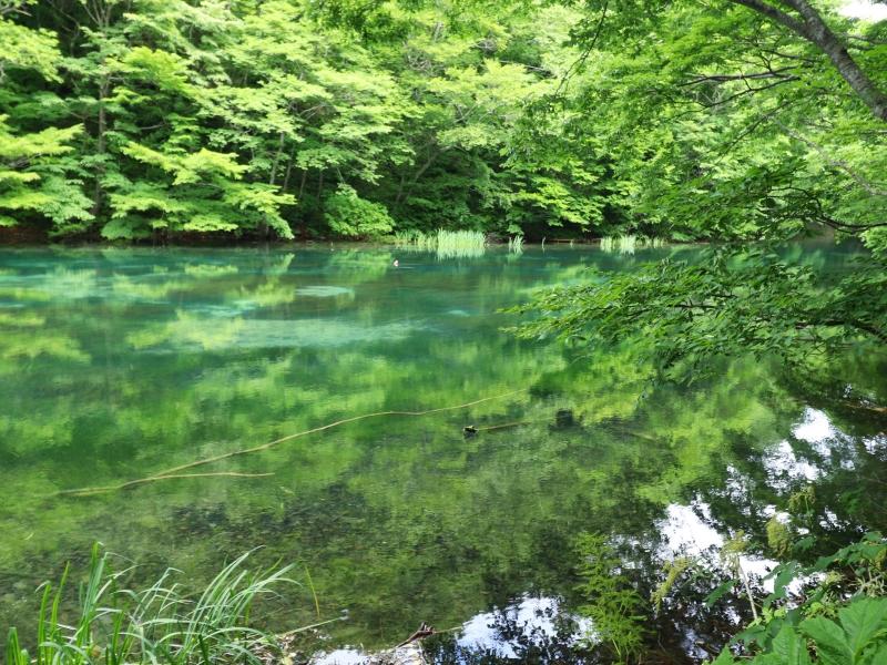 【青森】奥入瀬渓流・十和田湖観光2日間のモデルコース