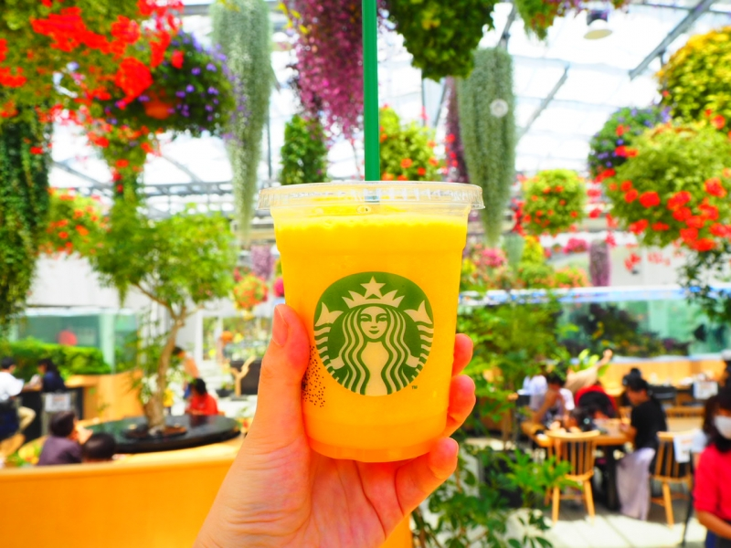 日本初!植物園内の【スターバックスHANA・BIYORI店】がフォトジェニックすぎる!東京