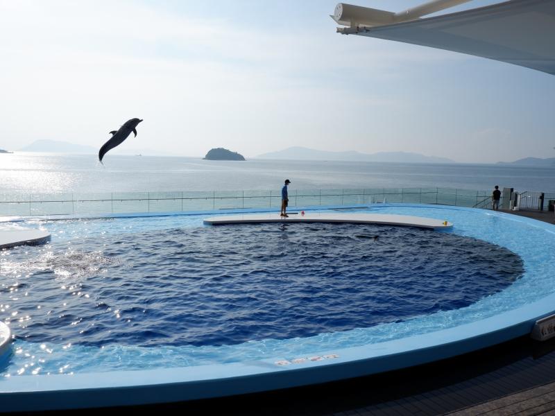 【香川】四国最大の海のミュージアム「四国水族館」5つの見どころガイド