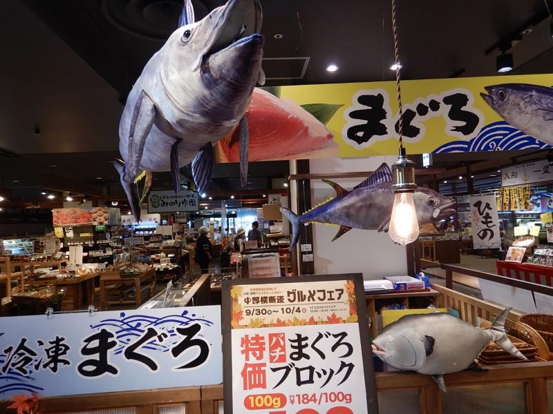 【静岡市清水区】海鮮!富士山!船旅!見どころぎゅっと週末旅