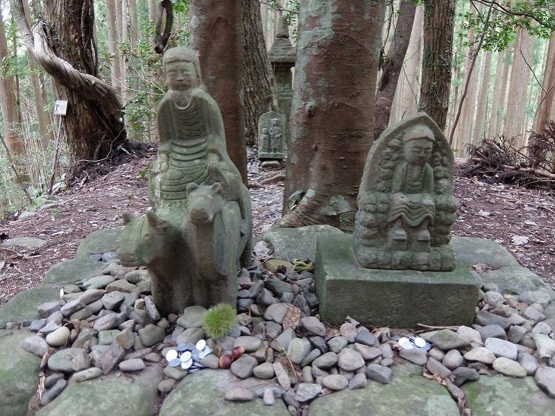 【和歌山】熊野古道 中辺路巡礼トレッキングと、温泉を楽しむ2泊3日モデルプラン