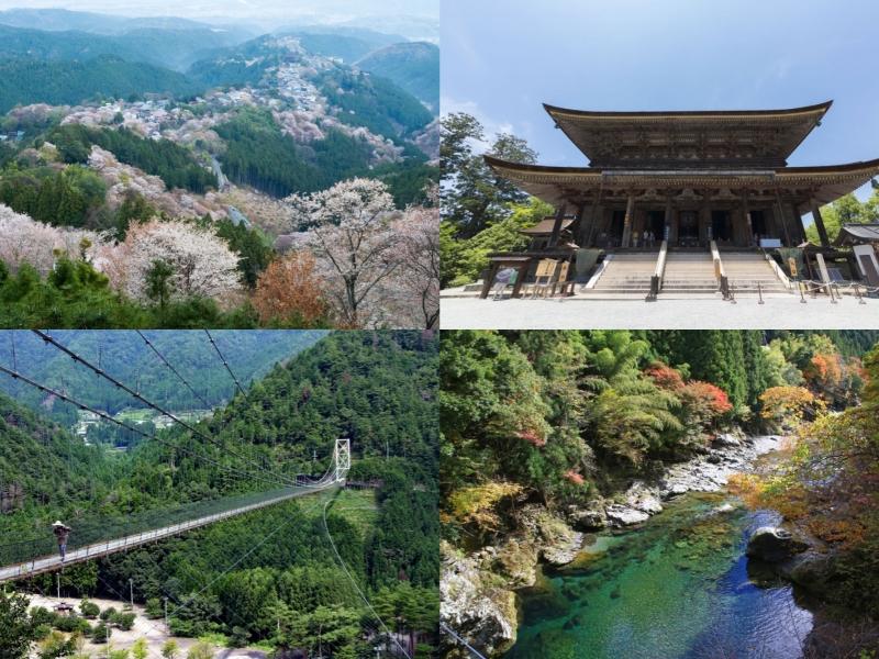 【奈良】1泊2日で吉野山・金峯山寺・谷瀬の吊り橋をめぐる観光モデルコース