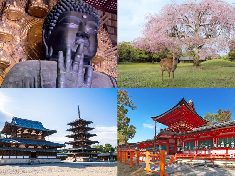 奈良県の人気観光スポットをめぐるモデルコース6選!奈良旅行におすすめ