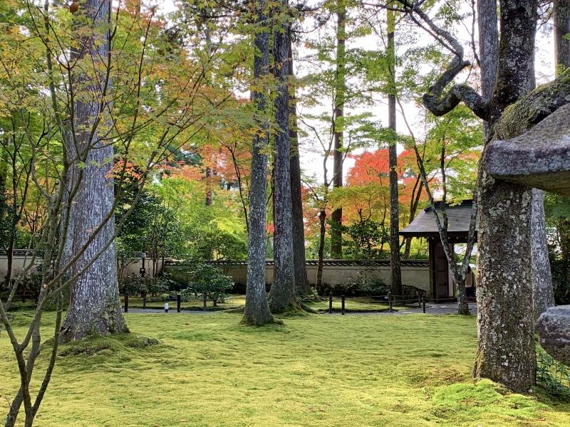 喧騒を抜け出し郊外へ!大人の京都旅〜貴船神社・三千院〜