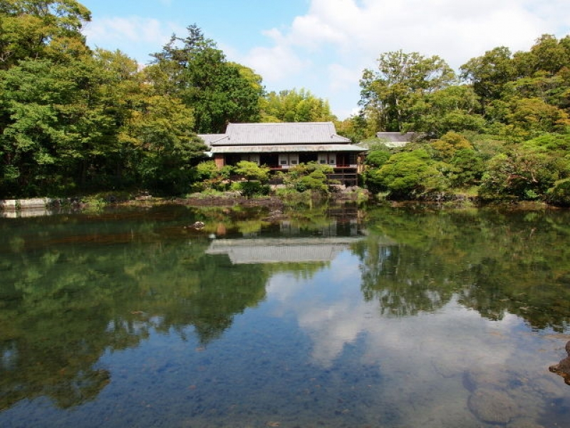 駅前にジオパーク!自然と歴史を学び、家族で遊べる三島市・楽寿園