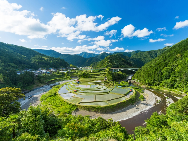 【和歌山】コロナ禍で人気が上昇した観光スポット24選
