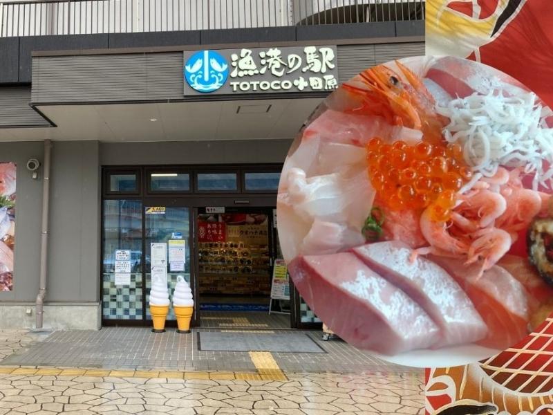【神奈川】小田原でも海鮮乗っけ丼が食べられる!日本初の漁港の駅「TOTOCO 小田原」