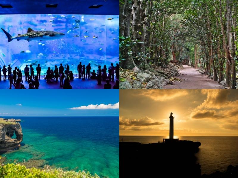 【沖縄】2泊3日で美ら海水族館・万座毛・美浜アメリカンビレッジをめぐる観光モデルコース