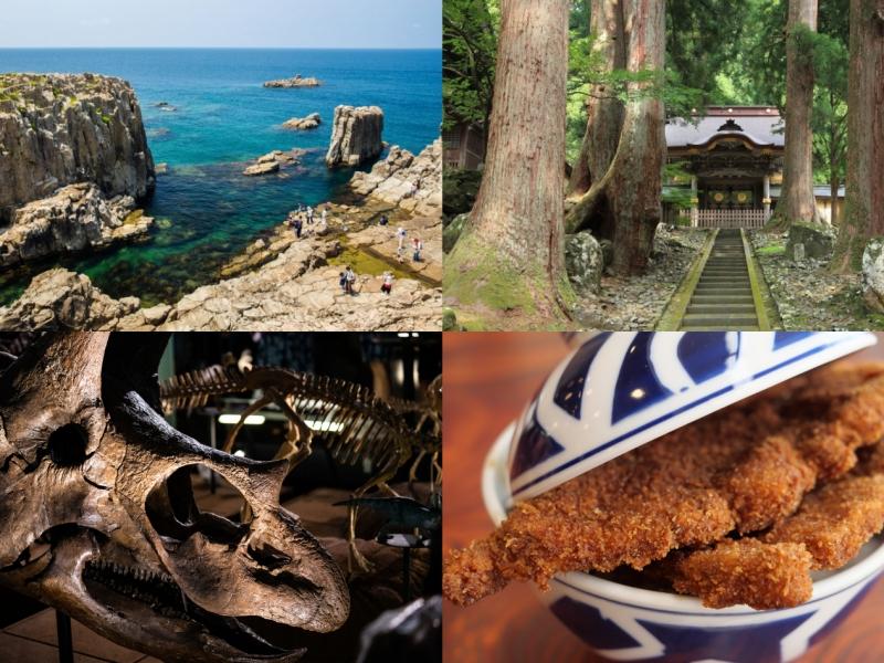 東尋坊に永平寺・恐竜博物館も!福井の人気名所をめぐる1泊2日観光モデルコース