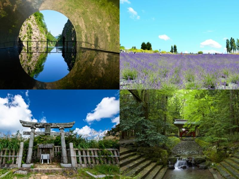 【新潟】1泊2日で彌彦神社・清津峡・ 寺泊魚の市場通りをめぐる観光モデルコース