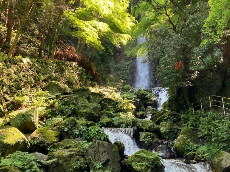 【岐阜】疲れた時こそ行きたいパワースポット「養老の滝」と「菊水泉」