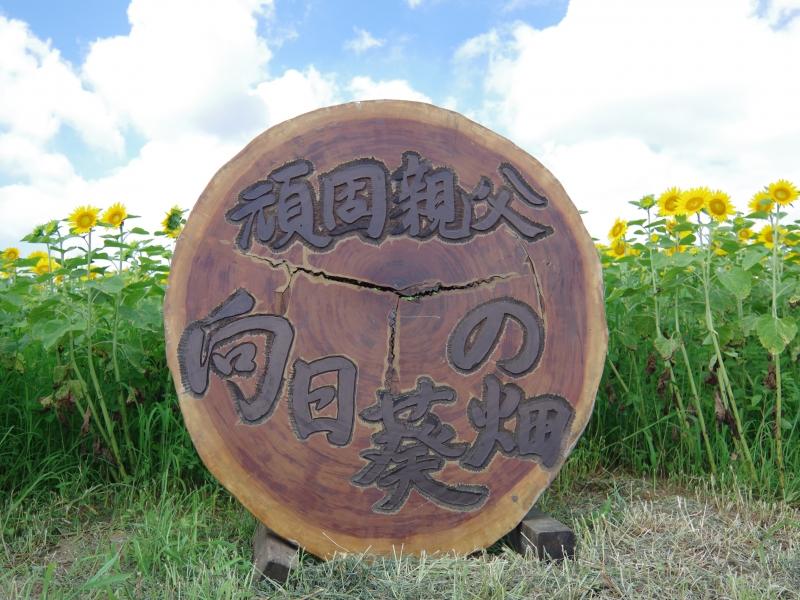 【群馬県富岡市】雄大なロケーション!「丹生湖 頑固親父のひまわりの畑」を見に行こう!