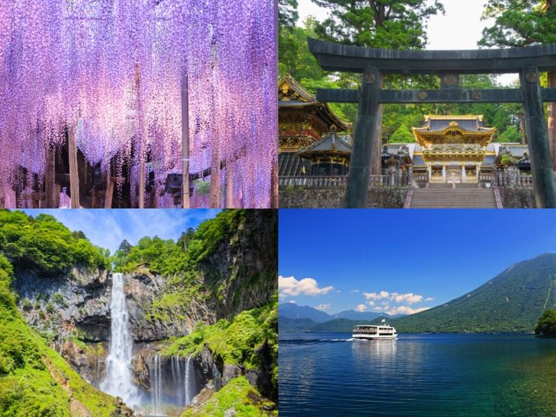 栃木の人気観光スポットをめぐるモデルコース4選!栃木旅行におすすめ