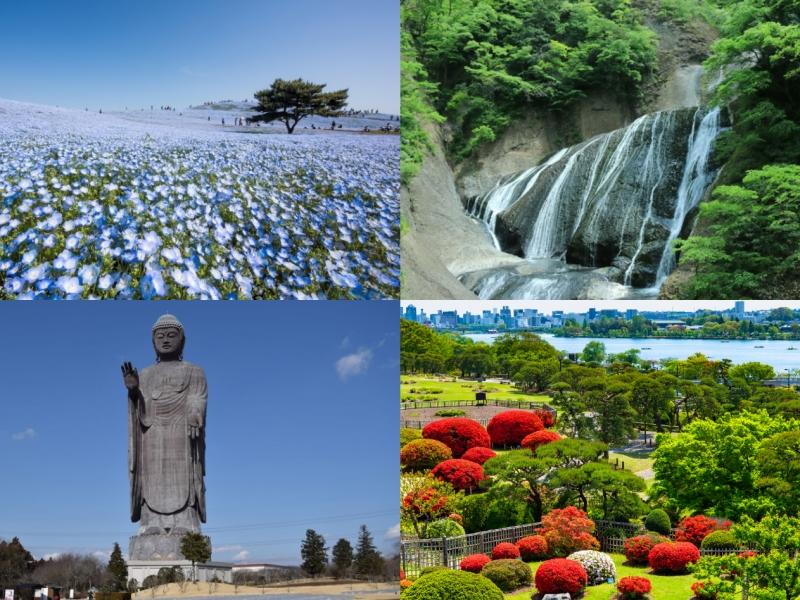 茨城の人気観光スポットをめぐるモデルコース5選!茨城旅行におすすめ