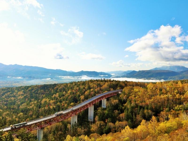 樹海の上を爽快ドライブ!北海道で国道が通る最も高い峠「三国峠」へ