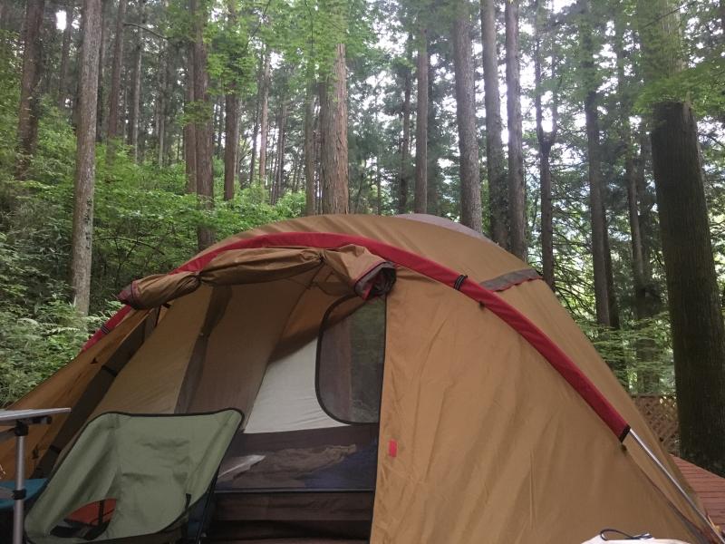都心から2時間で大自然!奥多摩で河原・林間キャンプができる川井キャンプ場!