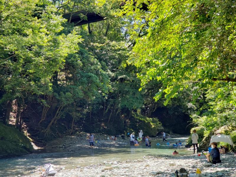 【愛媛】清流で子供と川遊びも!「霧の森」で自然の中で食べて遊んで湯ったり~