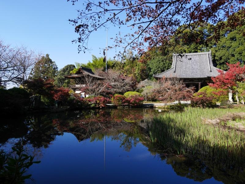 【奈良】紅葉が美しい長岳寺と周辺を散策!ランチのお店も紹介