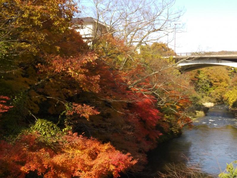 【石川】開湯1,300年の温泉郷「山中温泉」 周辺の観光スポット4選