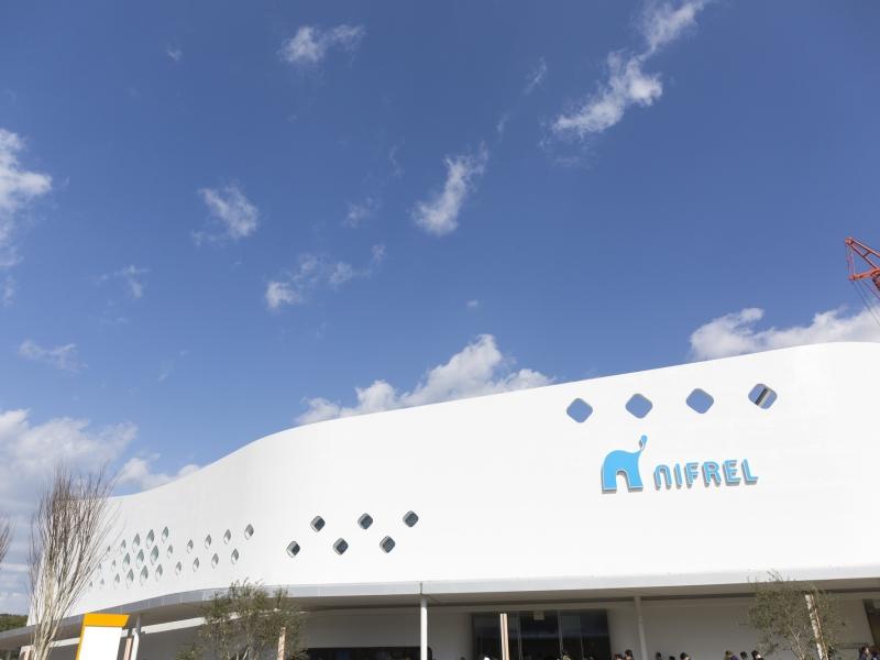 【大阪】新感覚水族館!生きているミュージアム・ニフレルへ行こう