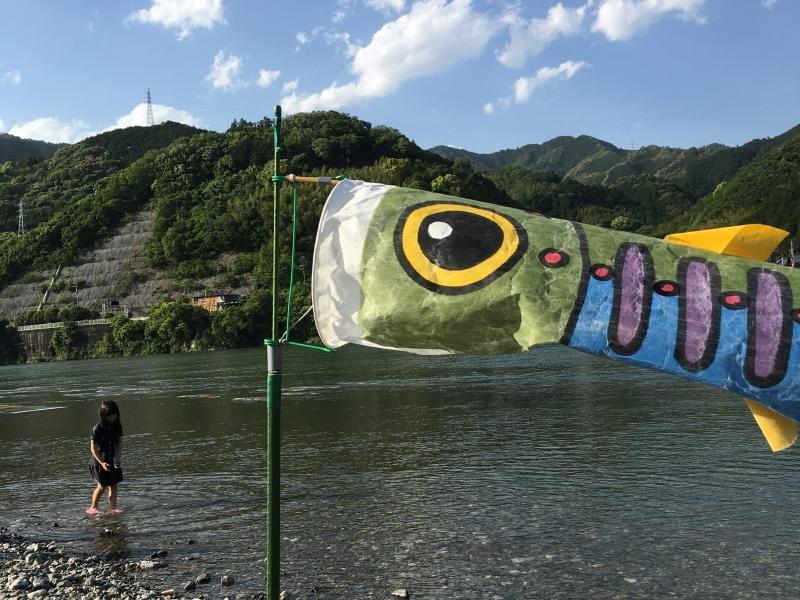 川の中で泳ぐ鯉のぼり!高知県「いの町」でしか見られない風景とは?